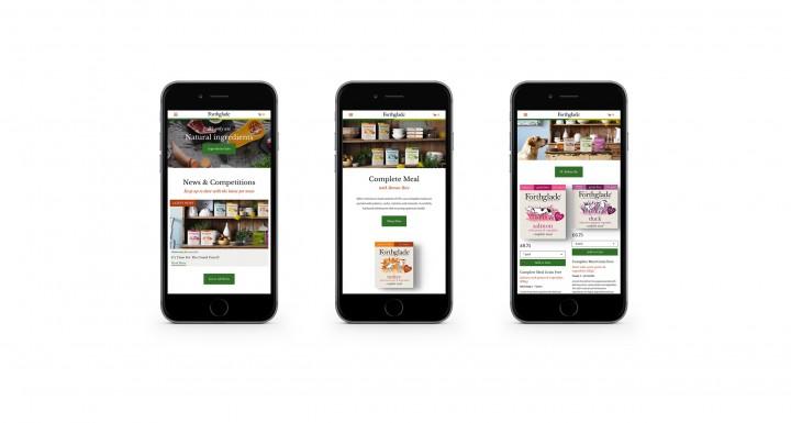 Responsive Ecommerce Web Design