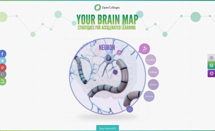 interactive website design by Green Chameleon