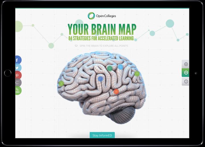 Brain Map Interactive Web Design